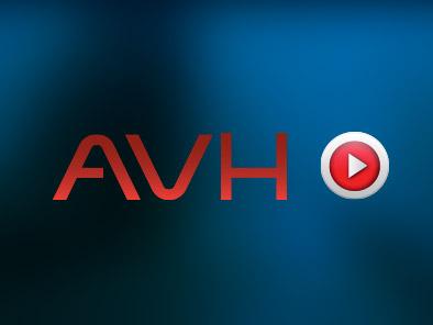 AVH | Brand y Web Design